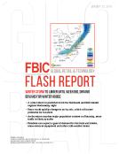 FBIC Global Retail Tech Flash Report on Winter Storm Jan. 21
