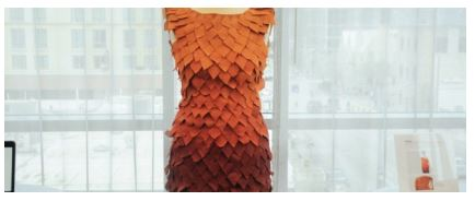 The Fall dress at SXSW