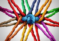 Community Ropes